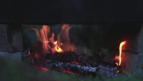 Απανθρακωμένο ξύλο στην πυρκαγιά Καίγοντας το ξύλο στις φωτεινές φλόγες στο σκοτεινό, κλείστε επάνω, δυναμική σκηνή, τονισμένο βί απόθεμα βίντεο
