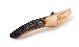 Απανθρακωμένο ξύλινο κούτσουρο Στοκ Εικόνες