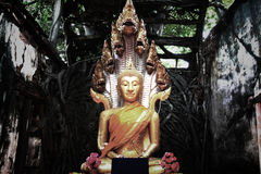 Απαρατήρητη Ταϊλάνδη, καταστροφές του παλαιού ναού με μια ρίζα δέντρων Bodhi Στοκ φωτογραφία με δικαίωμα ελεύθερης χρήσης