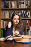 Απασχολημένος νέος σπουδαστής brunette στοκ φωτογραφίες με δικαίωμα ελεύθερης χρήσης