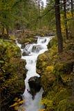 απατεώνας ποταμών φαραγγ&iot Στοκ Εικόνα