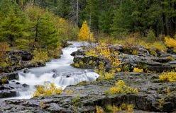 απατεώνας ποταμών φαραγγ&iot Στοκ Φωτογραφίες