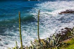 Απατεώνας Σάο ακτών στο νησί του Miguel Σάο Στοκ Φωτογραφίες