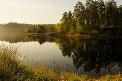Απεικονισμένος σε μια λίμνη στα ξύλα στοκ φωτογραφία με δικαίωμα ελεύθερης χρήσης