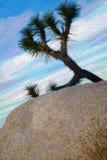 Απεικόνιση αφισών δέντρων του Joshua διανυσματική απεικόνιση