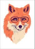 Απεικόνιση αλεπούδων Στοκ εικόνες με δικαίωμα ελεύθερης χρήσης