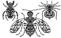 Απεικόνιση εντόμων Έντομα δερματοστιξιών αράχνη στην άσπρη ανασκόπηση απεικόνιση αποθεμάτων