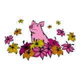 Απεικόνιση ενός όμορφου ρόδινου χοίρου στο υπόβαθρο των πολύβλαστων λουλουδιών διανυσματική απεικόνιση