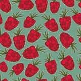 Απεικόνιση θερινών φρούτων Άνευ ραφής υπόβαθρο με το κόκκινο σμέουρο Χαριτωμένο σχέδιο σμέουρων Στοκ Εικόνες
