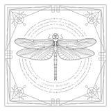 Απεικόνιση λιβελλουλών Mystyc Στοκ εικόνες με δικαίωμα ελεύθερης χρήσης
