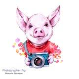 Απεικόνιση καλοκαιρινών διακοπών Χοίρος κινούμενων σχεδίων Watercolor με τη κάμερα αστείος φωτογράφος ταξίδι Σύμβολο του έτους το ελεύθερη απεικόνιση δικαιώματος