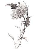 Απεικόνιση μελανιού του λουλουδιού Ύφος sumi-ε Στοκ φωτογραφία με δικαίωμα ελεύθερης χρήσης