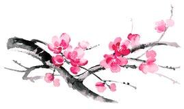 Απεικόνιση μελανιού του sakura Ύφος sumi-ε Στοκ φωτογραφία με δικαίωμα ελεύθερης χρήσης