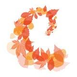 Απεικόνιση με τα φύλλα φθινοπώρου δινών απεικόνιση αποθεμάτων