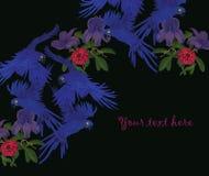 Απεικόνιση με τον υάκινθο macaws Εσείς κείμενο εδώ Στοκ φωτογραφία με δικαίωμα ελεύθερης χρήσης