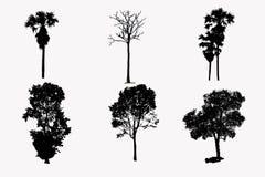 Απεικόνιση με το σύνολο σκιαγραφιών δέντρων που απομονώνεται στην άσπρη πορεία υποβάθρου και ψαλιδίσματος Στοκ φωτογραφία με δικαίωμα ελεύθερης χρήσης