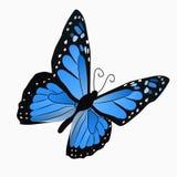 Απεικόνιση μιας ζωηρόχρωμης πεταλούδας Στοκ φωτογραφία με δικαίωμα ελεύθερης χρήσης