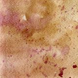 Απεικόνιση μιας σύστασης watercolor των καφετιών και ρόδινων λουλουδιών ocher, Το αφηρημένο υπόβαθρο Watercolor, λεκέδες, θαμπάδα Στοκ Φωτογραφίες