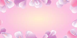 απεικόνιση λουλουδιών Ρόδινα πέταλα στο ροζ διάνυσμα Στοκ εικόνα με δικαίωμα ελεύθερης χρήσης