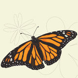Απεικόνιση πεταλούδων μοναρχών Στοκ Εικόνα