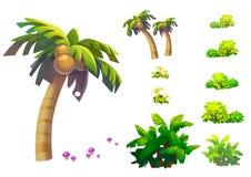 Απεικόνιση: Τα φανταστικά τροπικά στοιχεία/τα αντικείμενα παραλιών θέτουν 1 Δέντρο καρύδων, χλόη, μανιτάρι, κ.λπ. Στοκ εικόνα με δικαίωμα ελεύθερης χρήσης