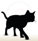 απεικόνιση της σκιαγραφίας γατών Στοκ Φωτογραφίες
