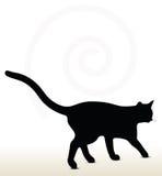 απεικόνιση της σκιαγραφίας γατών Στοκ φωτογραφίες με δικαίωμα ελεύθερης χρήσης