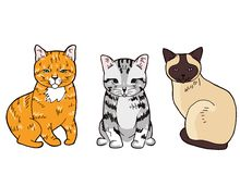Απεικόνιση τριών ζωηρόχρωμων γατών συνεδρίασης στο άσπρο υπόβαθρο ελεύθερη απεικόνιση δικαιώματος