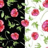Απεικόνιση των διανυσματικών κόκκινων παπαρουνών υπό μορφή άνευ ραφής σχεδίου Στοκ Φωτογραφίες