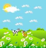 Απεικόνιση των εύθυμων βόσκοντας αγελάδων σε έναν πράσινο χορτοτάπητα με τα λουλούδια chamomiles διανυσματική απεικόνιση