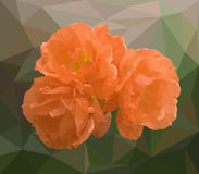 Απεικόνιση των τριαντάφυλλων Στοκ φωτογραφία με δικαίωμα ελεύθερης χρήσης