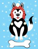Απεικόνιση Χριστουγέννων ενός σκυλιού σε ένα καπέλο και με μια πέτρα Ένα σκυλί αναπαράγει γεροδεμένου στο χιόνι Εικόνα για την κά Στοκ φωτογραφία με δικαίωμα ελεύθερης χρήσης