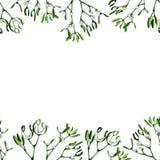 Απεικόνιση Χριστουγέννων Watercolor με το γκι και τον κόκκινο κάλαμο καραμελών στοκ εικόνα με δικαίωμα ελεύθερης χρήσης