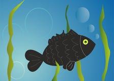 Απεικόνιση ψαριών Στοκ εικόνες με δικαίωμα ελεύθερης χρήσης