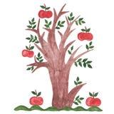 Απεικόνιση Watercolor ενός δέντρου μηλιάς Στοκ Εικόνες