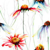 Απεικόνιση Watercolor με τα λουλούδια Gerberas Στοκ Εικόνα