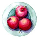 Απεικόνιση Watercolor με την εικόνα των μήλων σε ένα πιάτο Έννοια για την αγορά αγροτών, φυσικά προϊόντα, χορτοφαγία στοκ φωτογραφία