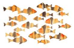 Απεικόνιση Watercolor των πορτοκαλιών ψαριών Στοκ φωτογραφίες με δικαίωμα ελεύθερης χρήσης