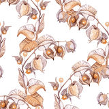 Απεικόνιση watercolor χειμερινών κερασιών Στοκ φωτογραφία με δικαίωμα ελεύθερης χρήσης