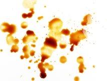 απελευθερώσεις καφέ Στοκ εικόνες με δικαίωμα ελεύθερης χρήσης