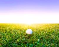 απεργίες παικτών γκολφ παιχνιδιών σφαιρών Στοκ φωτογραφίες με δικαίωμα ελεύθερης χρήσης