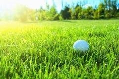 απεργίες παικτών γκολφ παιχνιδιών σφαιρών Στοκ εικόνες με δικαίωμα ελεύθερης χρήσης