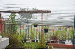 Απελευθέρωση βροχής Στοκ Εικόνες