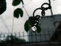 Απελευθερώσεις βροχής Στοκ εικόνες με δικαίωμα ελεύθερης χρήσης