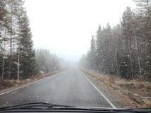 Απλές χιονώδεις διαδρομές ελαστικών αυτοκινήτου - πορτρέτο στοκ εικόνα