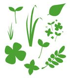 Απλή συμπαθητική καθορισμένη απεικόνιση της φρέσκιας πράσινης χλόης, φύλλο, μινιμαλισμός Μπορέστε να χρησιμοποιηθείτε για τις κάρ απεικόνιση αποθεμάτων