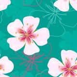Απλό χαριτωμένο άνευ ραφής σχέδιο ταπετσαριών Εκλεκτής ποιότητας ρόδινα λουλούδια σε πράσινο Στοκ Εικόνα
