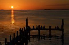 Αποβάθρα και ηλιοβασίλεμα στη βασική βραδύτατη Φλώριδα Στοκ Εικόνες