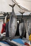 αποβάθρα πωλήσεων ψαράδω&nu Στοκ Εικόνες