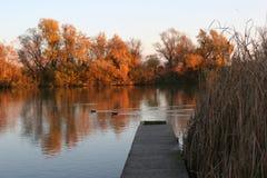 Αποβάθρα σε Δούναβη στοκ εικόνα